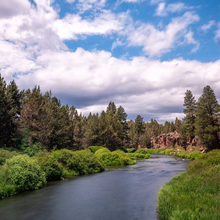 Scenic view of a river running through Tumalo State Park Oregon